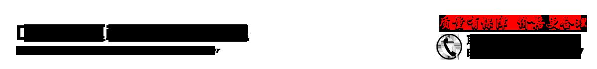 中山市南区标雪汽车服务中心_专业维修标致_雪铁龙_中山专业维修法系_中山专业汽车快修保养_发动机电脑解码