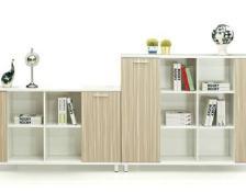 板式文件书柜展示