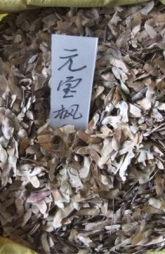 九江枫香,九江木荷