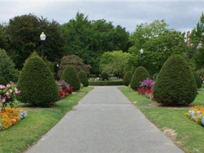 三亚园林绿化