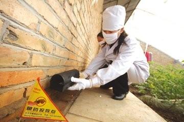 宁波灭鼠公司