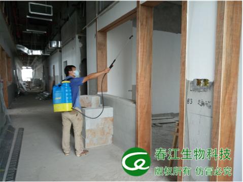房屋裝修白蟻預防