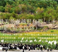 新疆最美景观越野自驾 (十一天十晚)B线(独家线路)