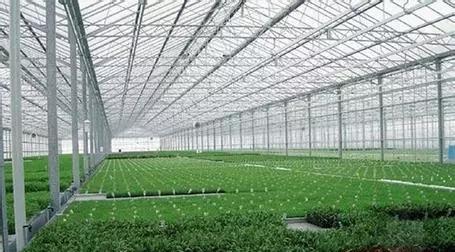 江西采光瓦透光瓦蔬菜大棚采光瓦工程