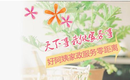 關于慶陽好阿姨家政服務有限公司運營模式