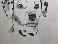 赣州纹身斑点狗图案手绘图