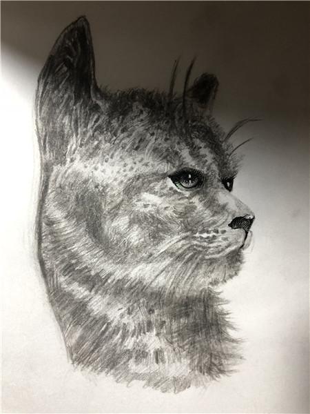 赣州纹身卡通图案手绘图