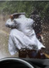 汽车憎水玻璃