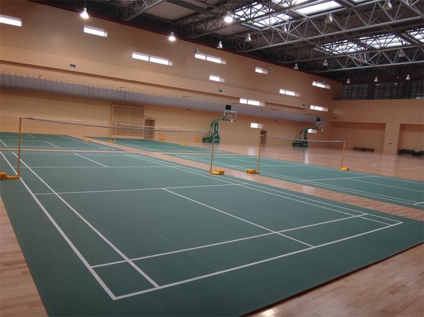 PVC塑胶运动型地板