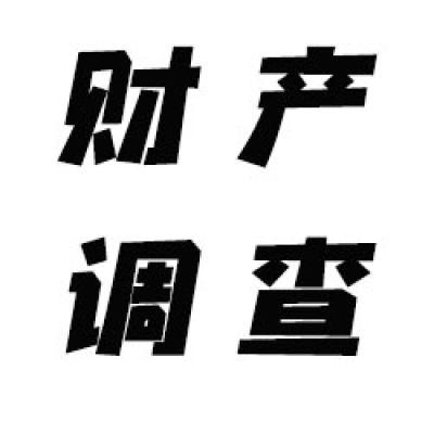 天津财产调查服务
