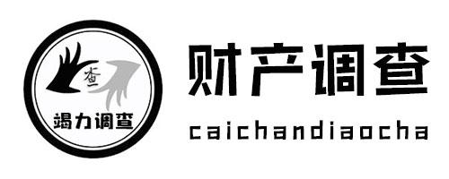南京财产调查服务