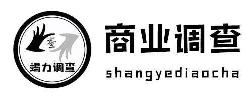 南京商业调查服务