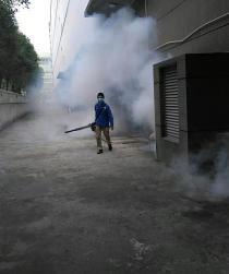 香港白蚁防治工程