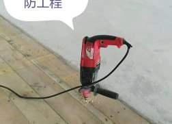 香港灭杀白蚁