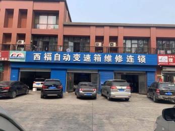 邯鄲西福 · 鑫磊