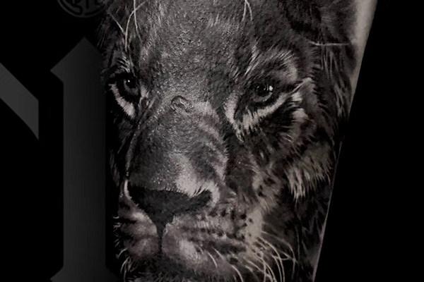 写实狮子遮盖纹身欣赏